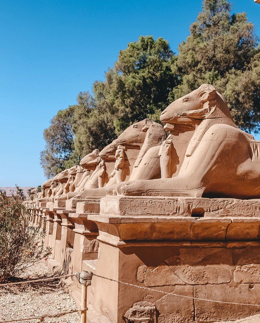 Экскурсия в Луксоре фото 2
