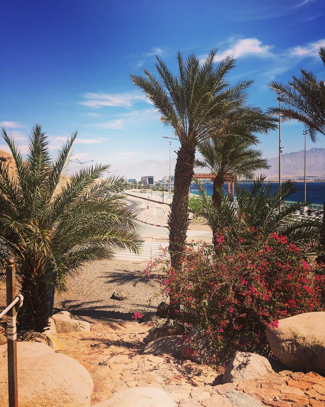 Трансферы по Египту фото