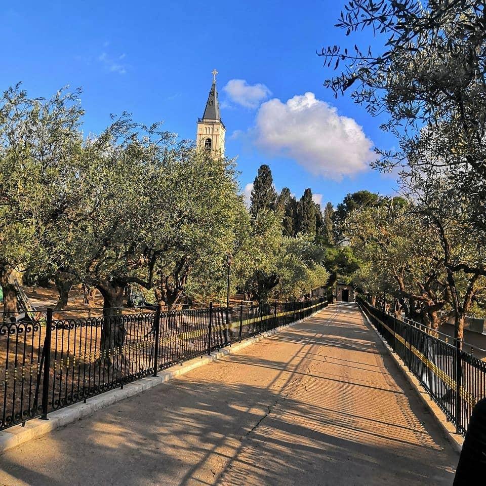 Экскурсия из Шарм Эль-Шейха в Израиль фото 4