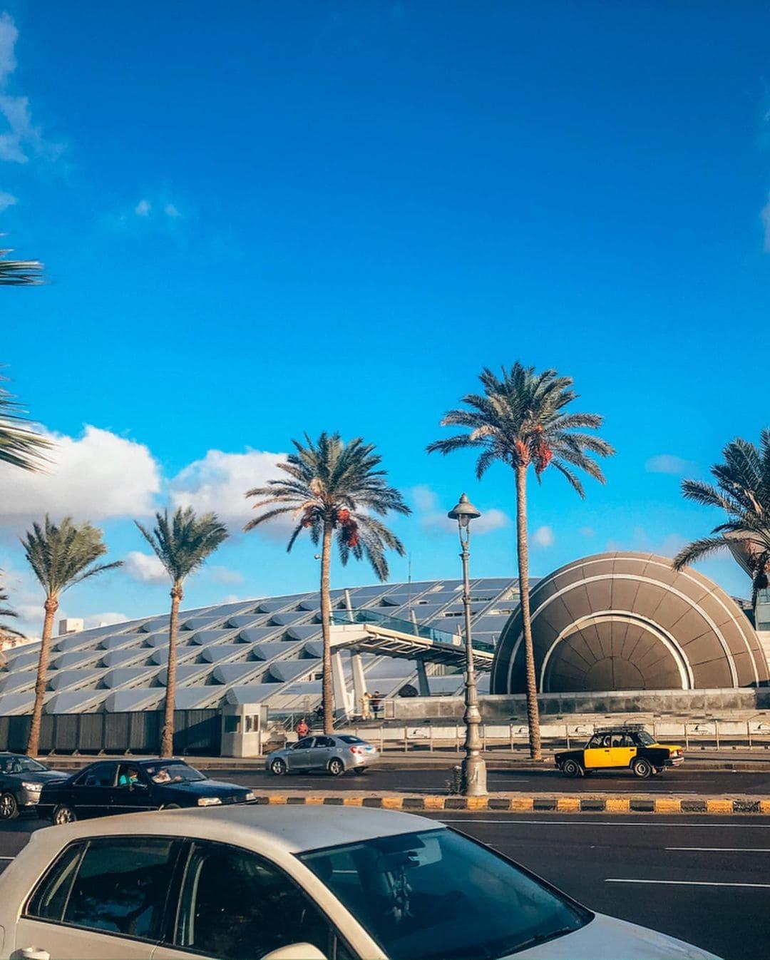 Экскурсия в Александрии фото 4